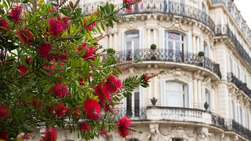 S'installer à Montpellier, trouver des pépites sur Achat Maison Montpellier