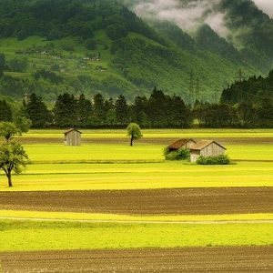 Conseils pour l'achat de terrain et la construction de votre maison